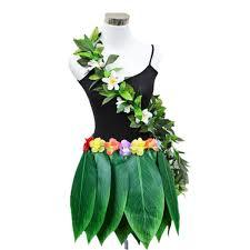 Amazoncom Hawaii Tropical Hula Costume Fancy Dress Hula