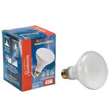 bulk sunbeam mighty bulb indoor floodlights 65 watt at dollartree