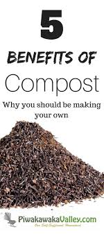 92 Best Composting Images On Pinterest | Gardening Tips ... Alcatraz Volunteers Composter Reviews 15 Best Bins And Tumblers Of 2017 Ecokarma 25 Outdoor Compost Bin Ideas On Pinterest How To Start Details About Compost Turner Tumbler Bin Backyard Worm Heres We Used Worms To Get The Free 5 Bins Form The City Phoenix Maricopa County Food Homemade Pallet Composting Garden Make An Easy Diy Blissfully Domestic