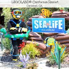 legoland california resort sea aquarium brie brie blooms