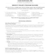 It Director Resume Samples Executive Sample Project Sales Indian Example