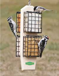 Super Clinger Suet Feeder