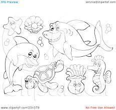 Pin Drawn Sea Life Ocean Animal 8