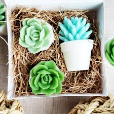 Watch Me Grow Succulent Soap Gift Set