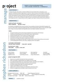 Construction Project Manager Resume Examples Of Resumes