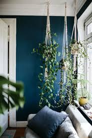vertikaler garten innen wohnzimmer hängende pflanzen