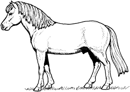 Horse Color Pages Printable Archives For Coloring Page