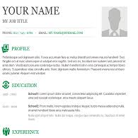 Examples High Resume Template Copy And Paste Formatting Free Career