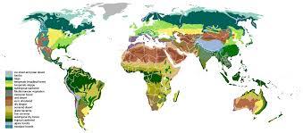Earth Floor Biomes Desert by Biome Zoo Tycoon Wiki Fandom Powered By Wikia