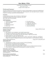 Resume Examples Healthcare Objective Consultant