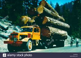 Lumber Truck In The Pacific Northwest, USA, 1950 Stock Photo ... Us Lumber Group Llc Atlanta Ga Rays Truck Photos Fshlyrestored Smithmiller And Pup Trailer Flatbed Delivering Wood With A Forklift Youtube Trucks Gallery Ad Moyer Logging Truck Wikipedia An Old Dump Is Positioned In A Gravel Yard With Box Raised Up Seymour At Parade Editorial Photography Image Of Md 140 Lumber Crash Carroll County Times Transport Forestry Industry Stock Dubell Showroom Cporate Hq Medford Nj 2013 Gsl Kidney Kamp Show 1948 Pete N Trailer Fitting Mgs Store