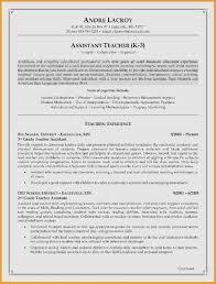 Bartender Job Description Resume Best Of Examples Luxury