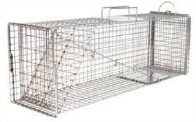 traps feral cat traps accessories feral cat traps