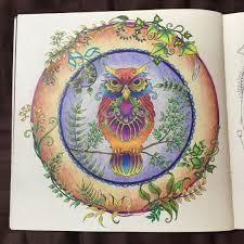 Owl Enchanted Forest Coruja Floresta Encantada Johanna Basford Coloring BooksColouringAdult
