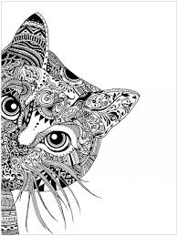 Free Online Coloring Pages For Adults Christmas Super Hard Abstract Animals Cat Head Large Size