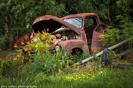 Rusty Truck Flower Bed Photograph Of A Charming Country Scene Rustic Landscape Abandoned On The Roadside Hope And Peace