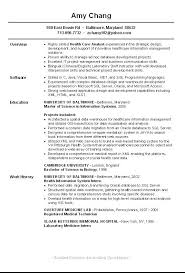 information technology curriculum vitae sle resume maker