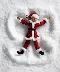 Raz Christmas Decorations 2015 by 22 Best Raz 2015 Christmas Trees Images On Pinterest Decorated