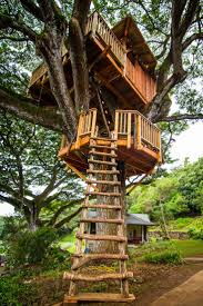 1531 Best Tree Houses Images On Pinterest | Trees, Tiny Houses And ... 10 Fun Playgrounds And Treehouses For Your Backyard Munamommy Best 25 Treehouse Kids Ideas On Pinterest Plans Simple Tree House How To Build A Magician Builds Epic In Youtube Two Story Fort Stauffer Woodworking For Kids Ideas Tree House Diy With Zip Line Hammock Habitat Photo 9 Of In Surreal Houses That Will Make Lovely Design Awesome 3d Model Free Deluxe