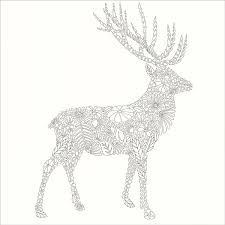 Animal Kingdom Coloring Book From KnitPicks Knitting By Millie Marotta On Sale