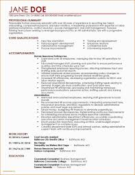 Professional Summary Resume – Kizi-games.me