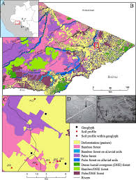 amazonia si e social impact of pre columbian geoglyph builders on amazonian forests pnas
