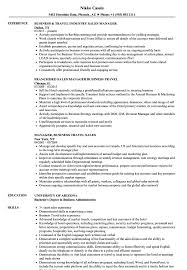 Download Business Travel Manager Resume Sample As Image File