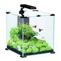 aqua occaz aquarium cube 15 litres gris complet pour eau douce