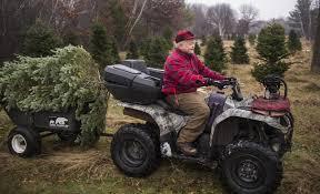 75 Foot Christmas Tree by At 75 A Minnesota Christmas Tree Farmer Isn U0027t Slowing Down