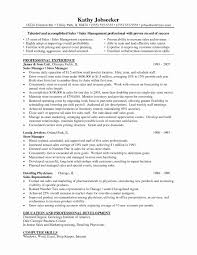 American Resume Format Lovely Jewelry Store Manager Sample