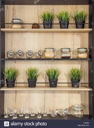 holz helf mit geschirr gläser mit gewürzen topfpflanze
