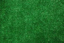 Amazon Indoor Outdoor Green Artificial Grass Turf Area Rug 9