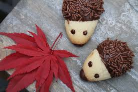 rezepte aus der heimat jezici keksici oder igel kekse