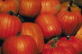 Pumpkin Patch Sioux Falls Sd by Haunted Houses And Other Halloween Fun In Sioux Falls