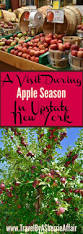 Pumpkin Patch Rochester New York by Best 25 Harvest Time Ideas On Pinterest