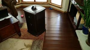 Laminate Wood Floor Buckling by Hard Wood Floor Cupping Page 2 Hearth Com Forums Home