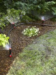 Above Ground Irrigation Systems For Landscaping | DIY Sprinkler System Sprinkler Systems Diy Good Home Design Gallery And The 25 Best Irrigation Ideas On Pinterest Irrigation System 2013 Veg Box Youtube Drip Basics Make Choosing An System Hgtv Self Watering Square Foot Garden Diy How To An At Golf Course Wedotanks And Tom Farley Land Best Designing A Basic Pvc For Peenmediacom Info Source Big Freeze 5 Things To Think About Before