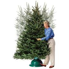 Fred Meyer Fresh Christmas Trees by St Nicks Choice Swivel Straight Christmas Tree Stand Walmart Com