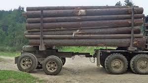 Big Green Truck Loaded With Logs Driving On A Dirt Road In The ...