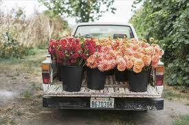 To Know About Starting A Food What Flower Truck Business You Need