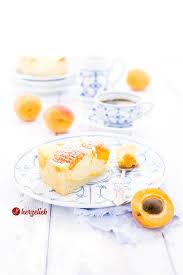 aprikosen quarkkuchen rezept