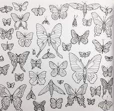 Fantastic Collections Coloring Book Butterfly Page