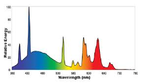 fluorescent lights fascinating fluorescent light bulb spectrum