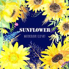 Sunflower Bath Gift Set by Sunflower Watercolour Clip Art Digital Watercolor Clipart