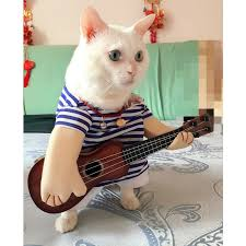 costume for cat aliexpress buy guitar player costume for