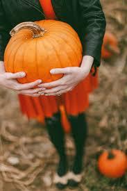 Pumpkin Patch College Station 2014 by Best 25 Pumpkin Picking Ideas On Pinterest Pumpkin Picking Near