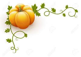 Vine clipart pumpkin leave 8
