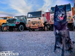 LTW - Big Trucks • The Dro J Bar G Farms Raiderfest 2018 Big Trucks Show Carters Crew 130 Best Rigs Images On Pinterest Trucks And Biggest Filebig South American Dump Truckjpg Wikimedia Commons Big Yellow American Pick Up Truck Stock Photo 22018153 Alamy Ltw The Dro Classical Modern Truck Transport Car Editorial Redneck Rambling On About With Pipes Rolling Coal Very With A Man 41495348 Small Kids Learning About Full Of The Jager Huberts Socktoberfest 10 Year Foot Monster Fun Spot Usa