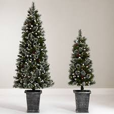 Gallery Of National Tree Co 4 Foot Poly Jersey Fraser Fir Entrance Potted Pre Conventional Lit Christmas Trees Lovely