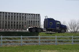 Livestock Haulers May Receive Another Extension For ELD Rules ...